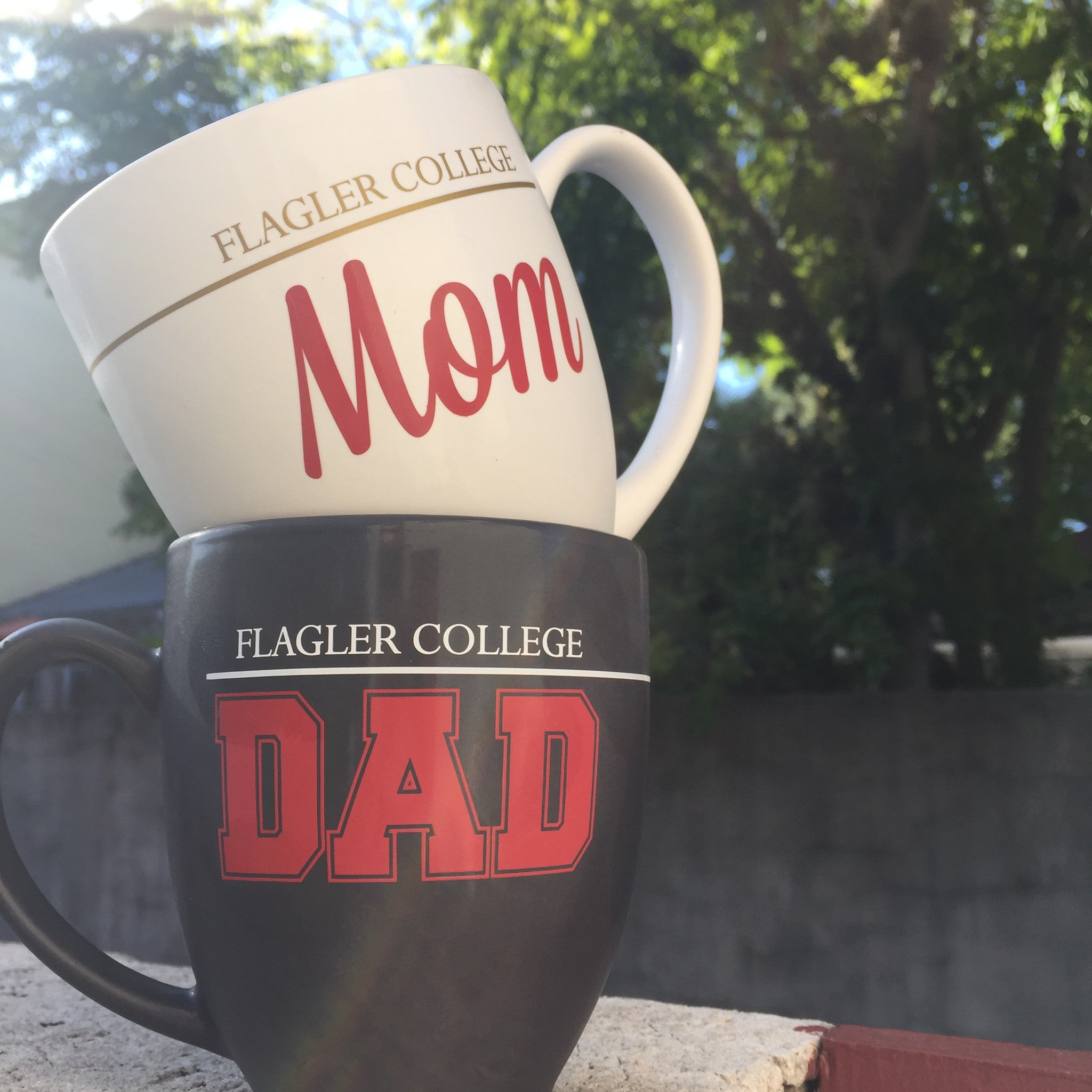 Flagler college mom and dad mugs