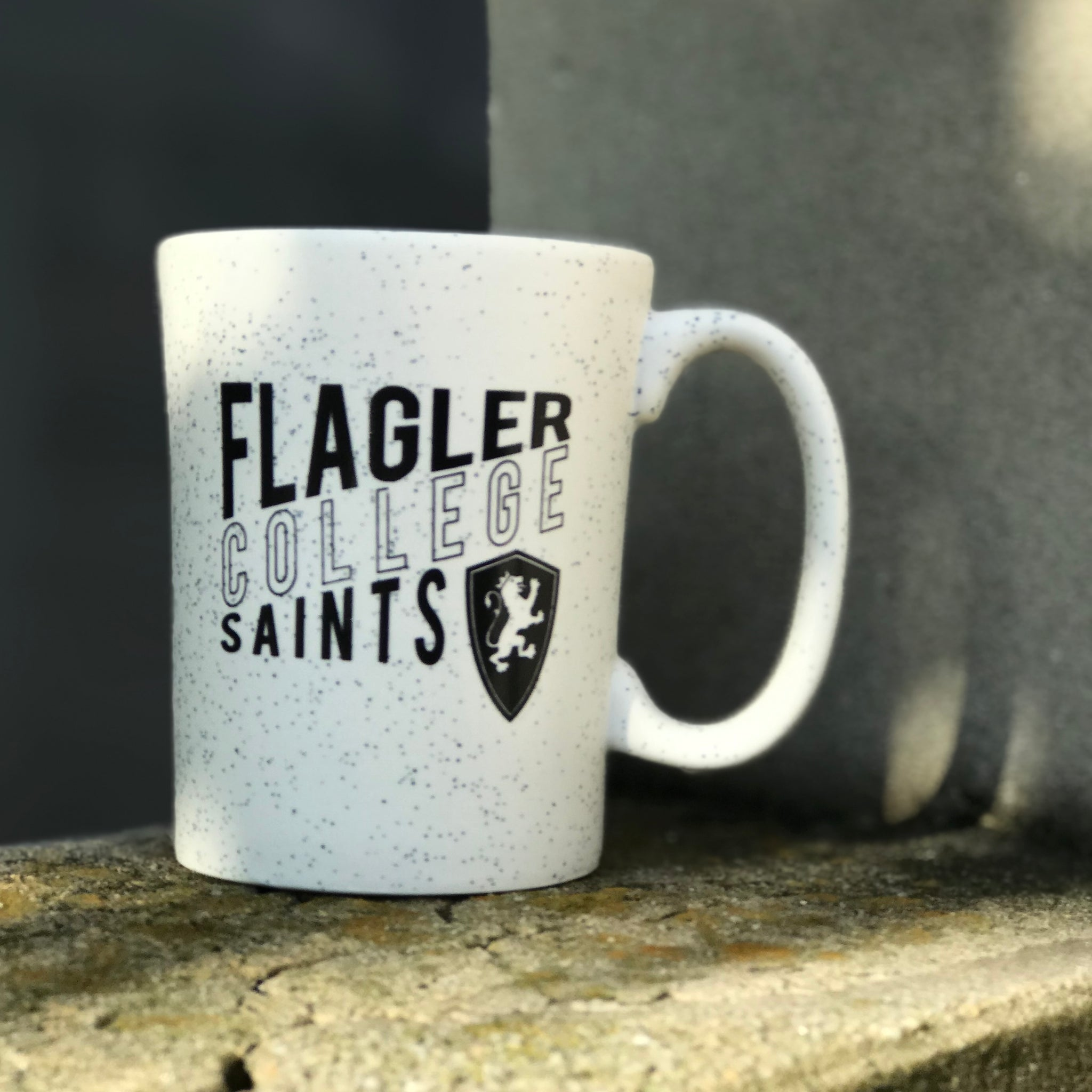 Lori Flagler College Saints Mug