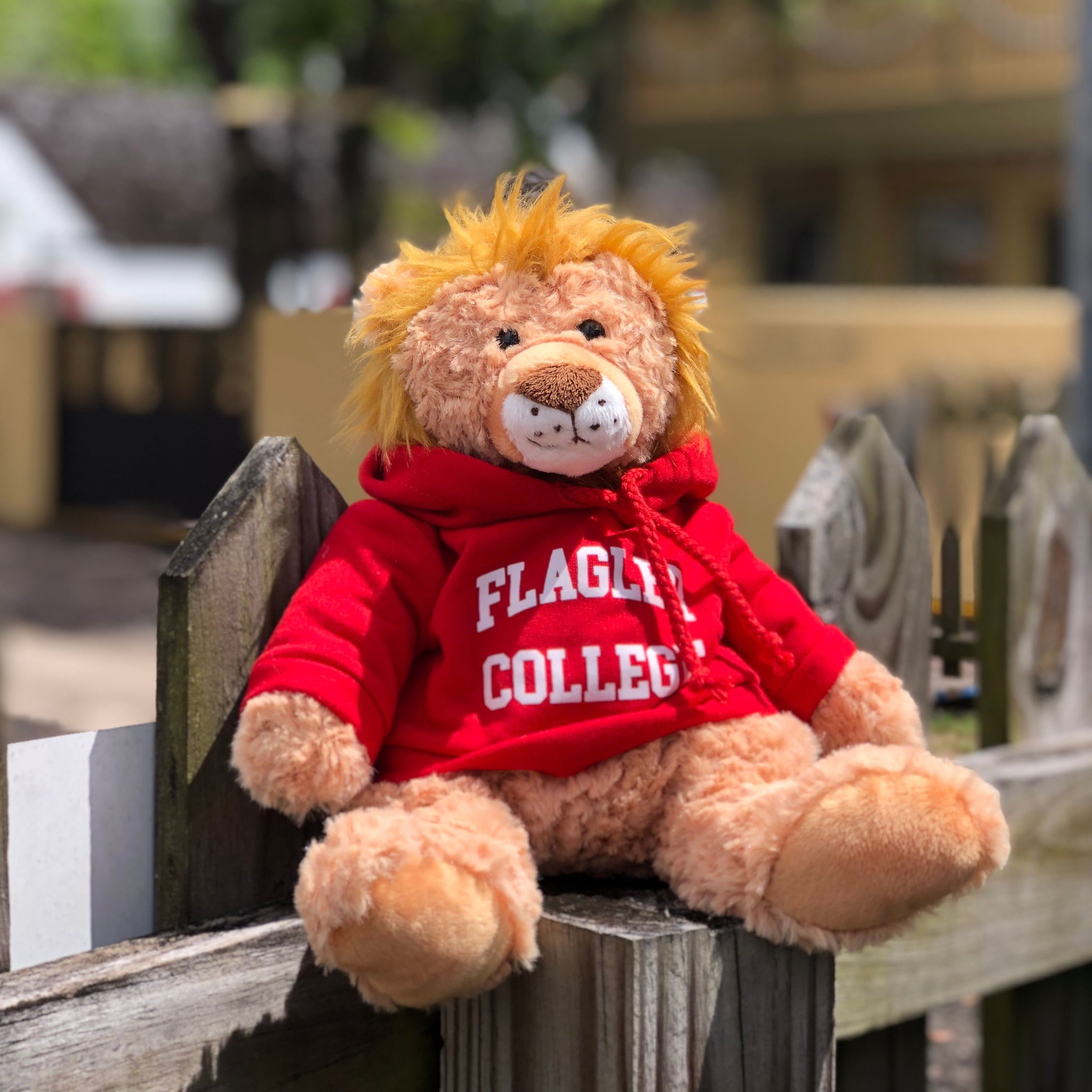 cuddle buddy lion with wearing red Flagler college hoodie