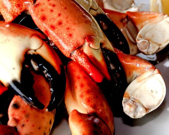 Stone Crabs by the Pound