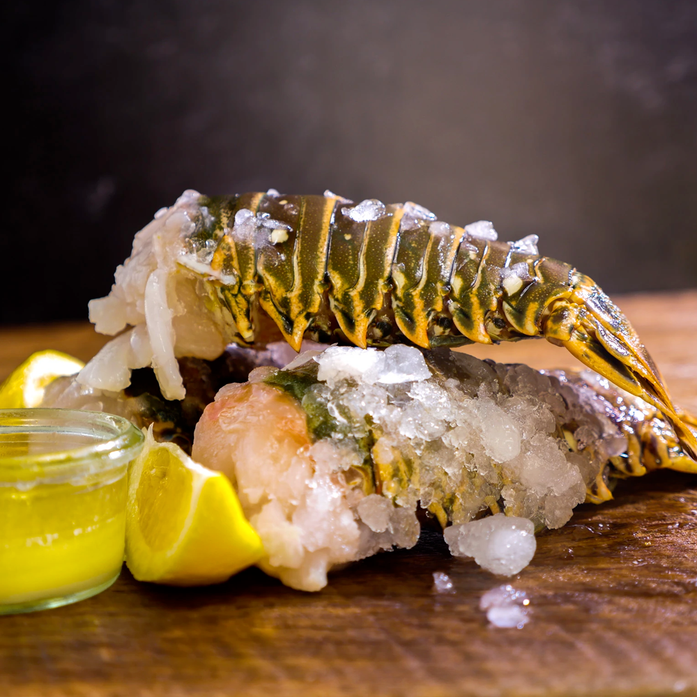 Florida Lobster Tails