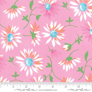 Good Day - Pink Daisy 22371