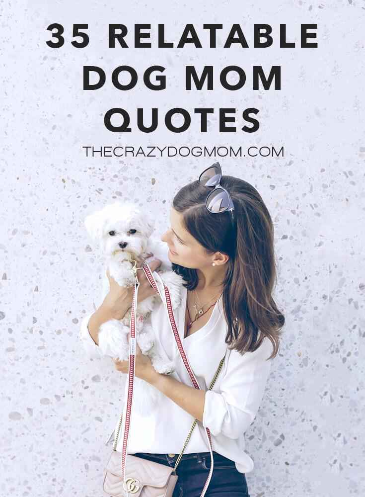 35 relatable dog mom quotes