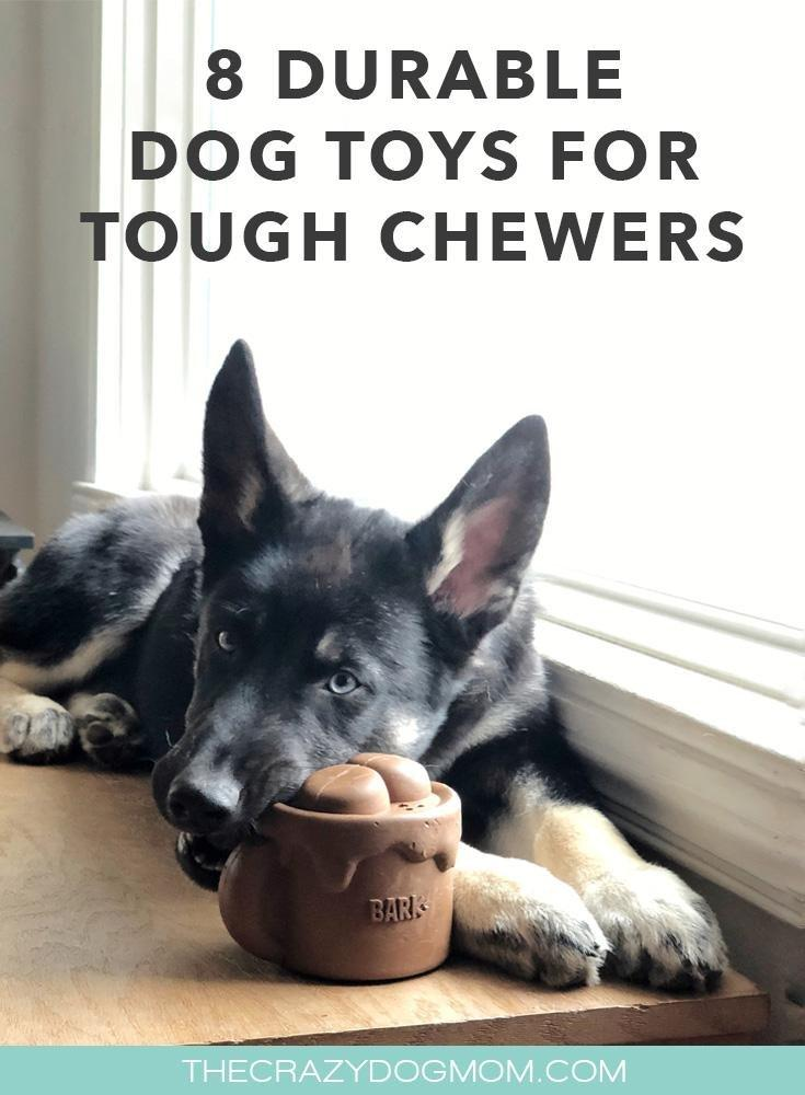8 Durable Dog Toys for Tough Chewers