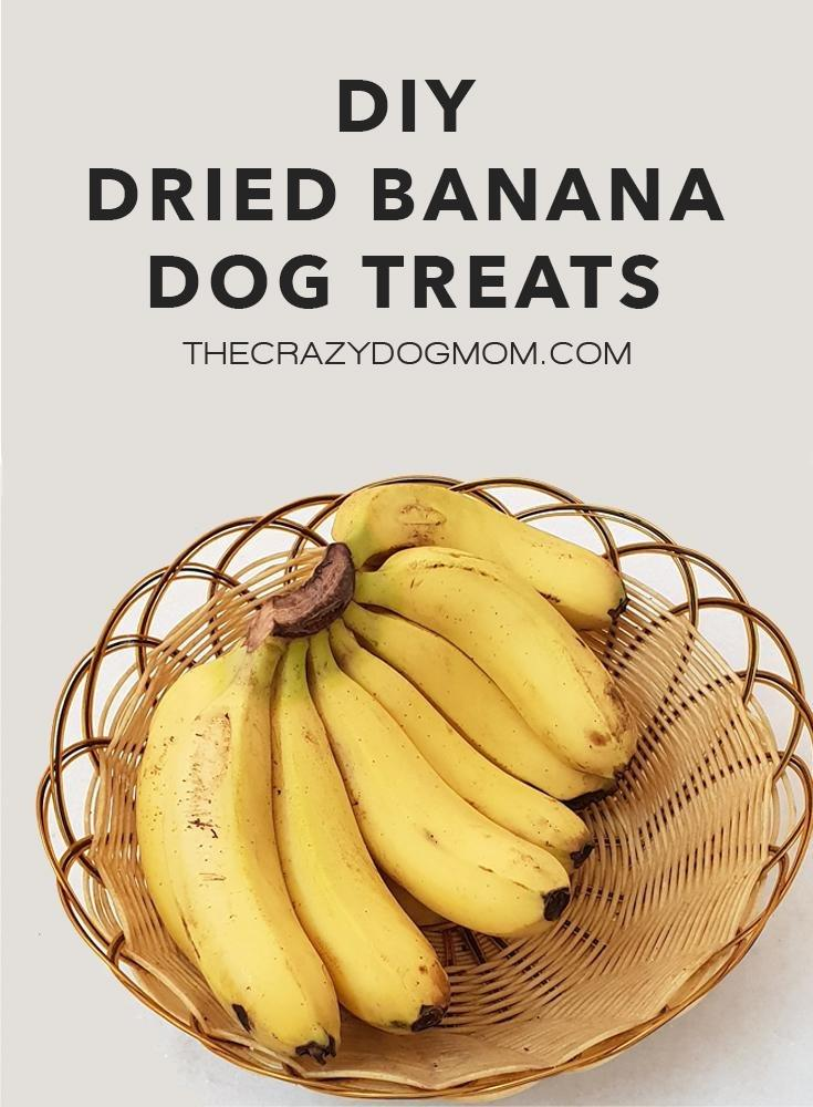 Dried Banana Dog Treat Recipe