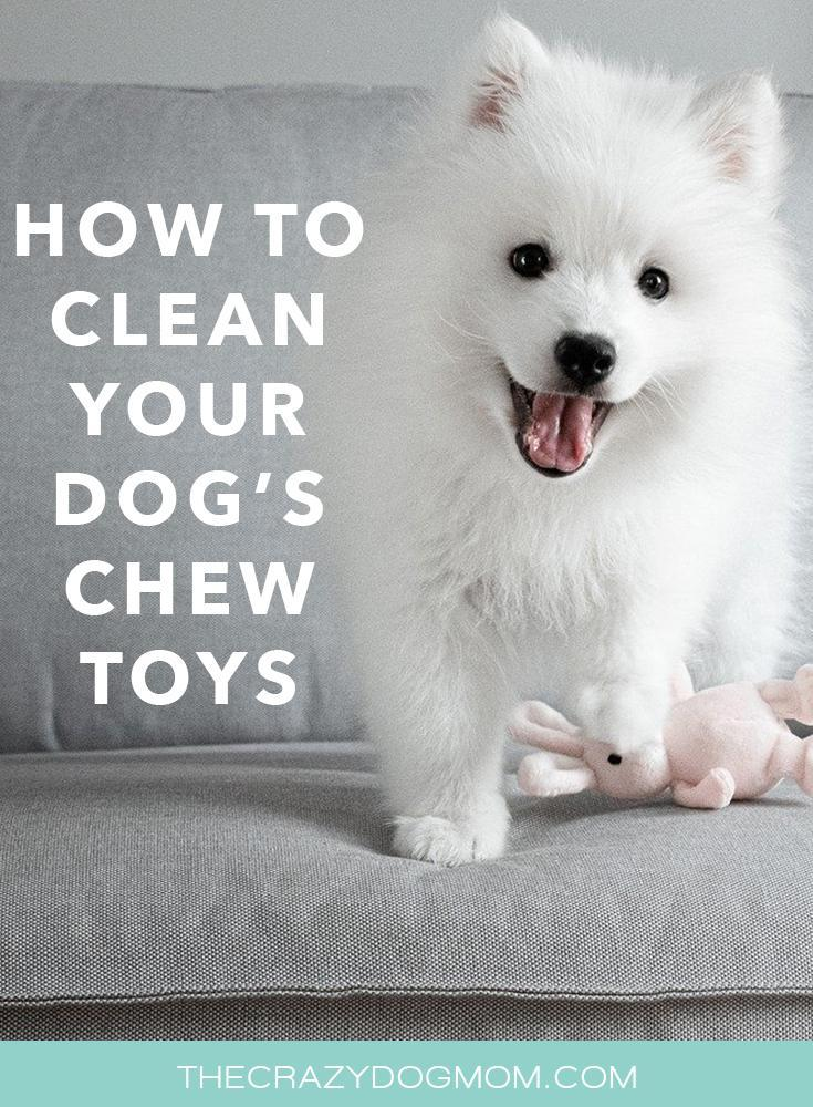 How to clean your dog's chew toys safely