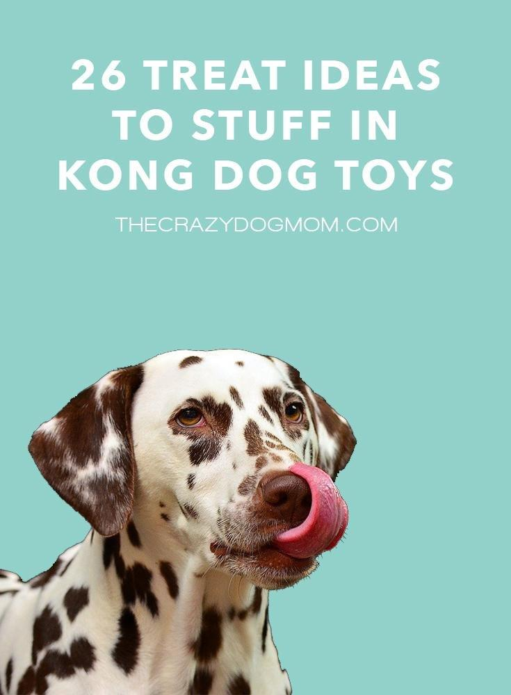 Treats for Kong Toys
