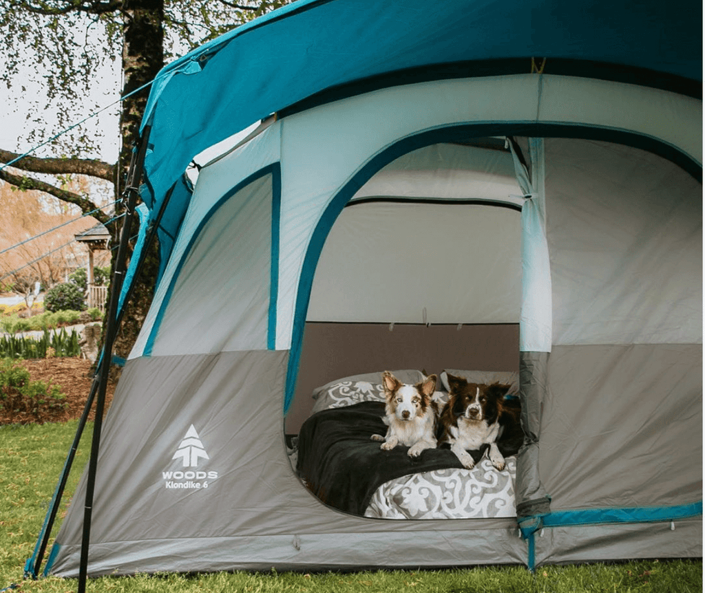 backyard camping with your dogs