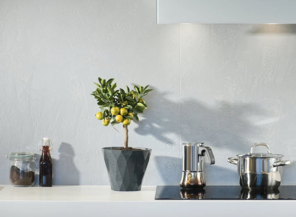10 Ways to Make Your Kitchen Greener
