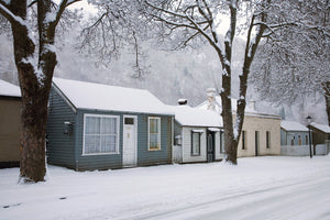 Winter Colours Arrowtown - SM009