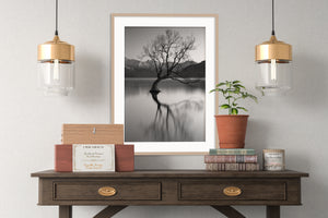 Lake Wanaka Tree - BWSM054