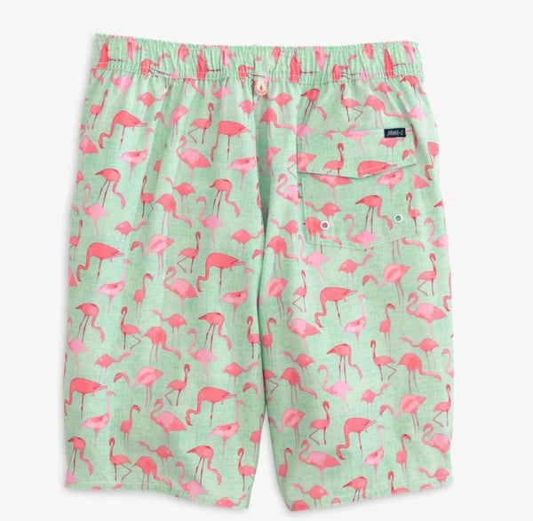 Acklins Flamingo Swim Trunk