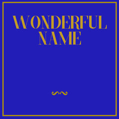 Wonderful Name Demo CD (NEW)