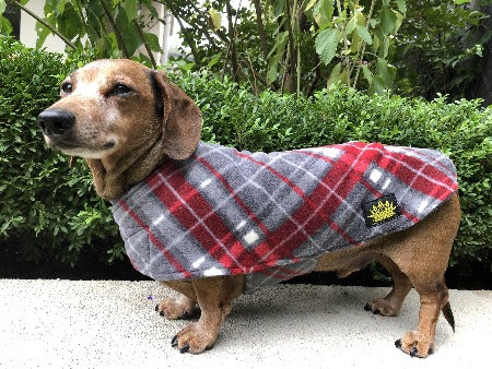 Velvet Grey Red Tartan Long Dog Cape