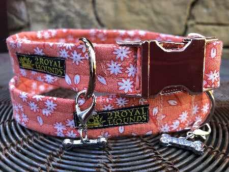 Orange Blooms Dog Collar