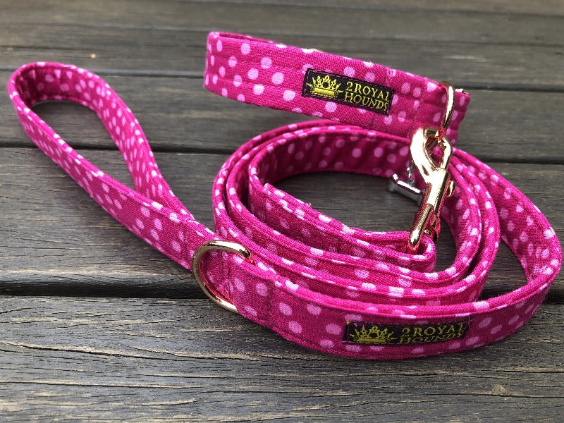 Buzzin Pink Collar and Lead Set
