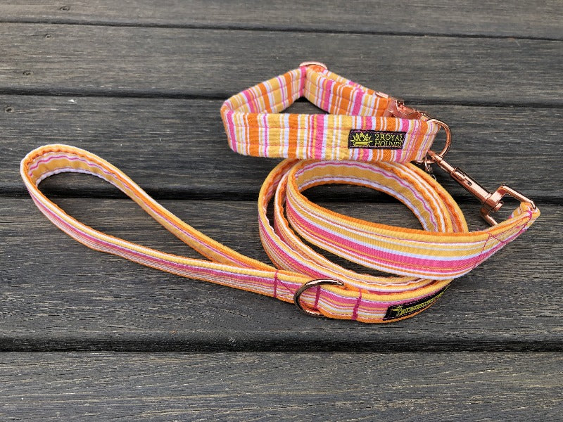 Summer Stripes Collar and Lead Set