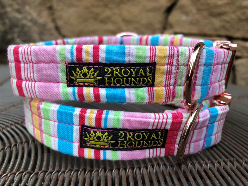 Happy Stripes Dog Collars