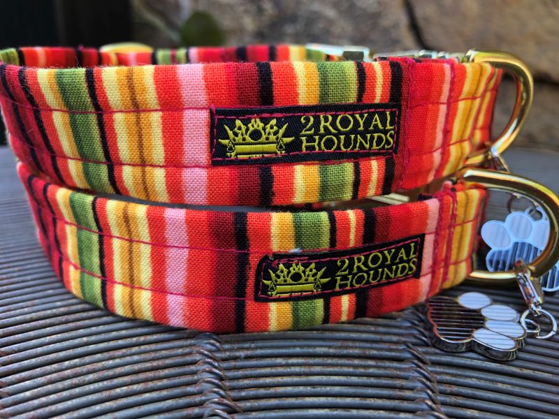 Striking Stripes Dog Collars