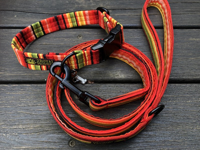Striking Stripes Collar and Lead Set