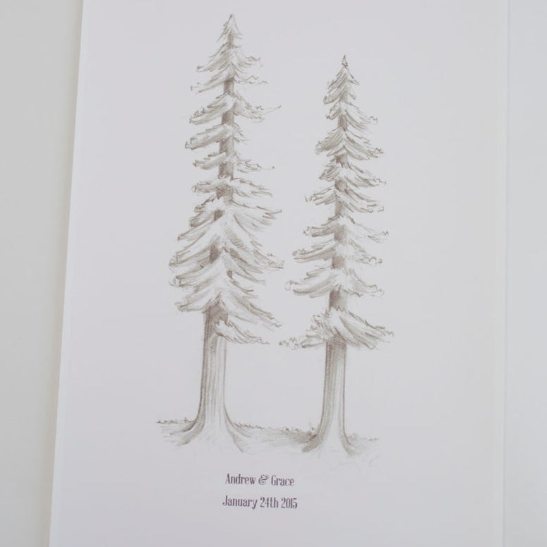 Redwood Trees - My Guest Book - 2