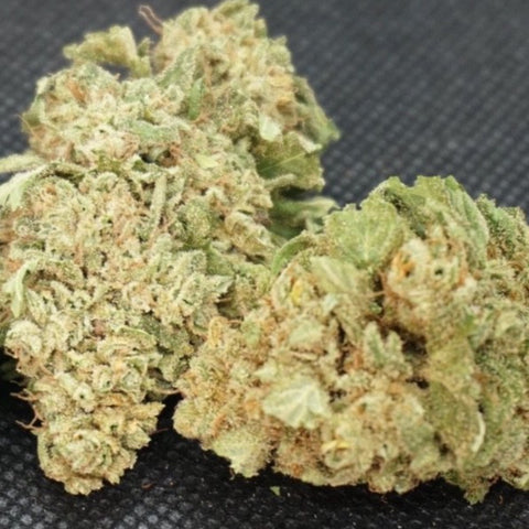 Image of Merlot CBD | Verified Feminized CBD Seeds