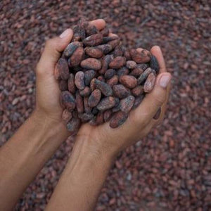 10 ways to use cacao nibs