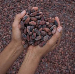 10 different ways to use cacao nibs