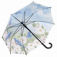 Galleria 'Bluebirds' Automatic Ladies Walking Umbrella