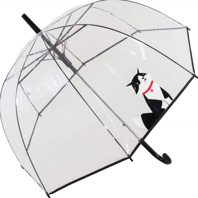 Susino Printed Auto Clear Dome Umbrella - Sitting Cat