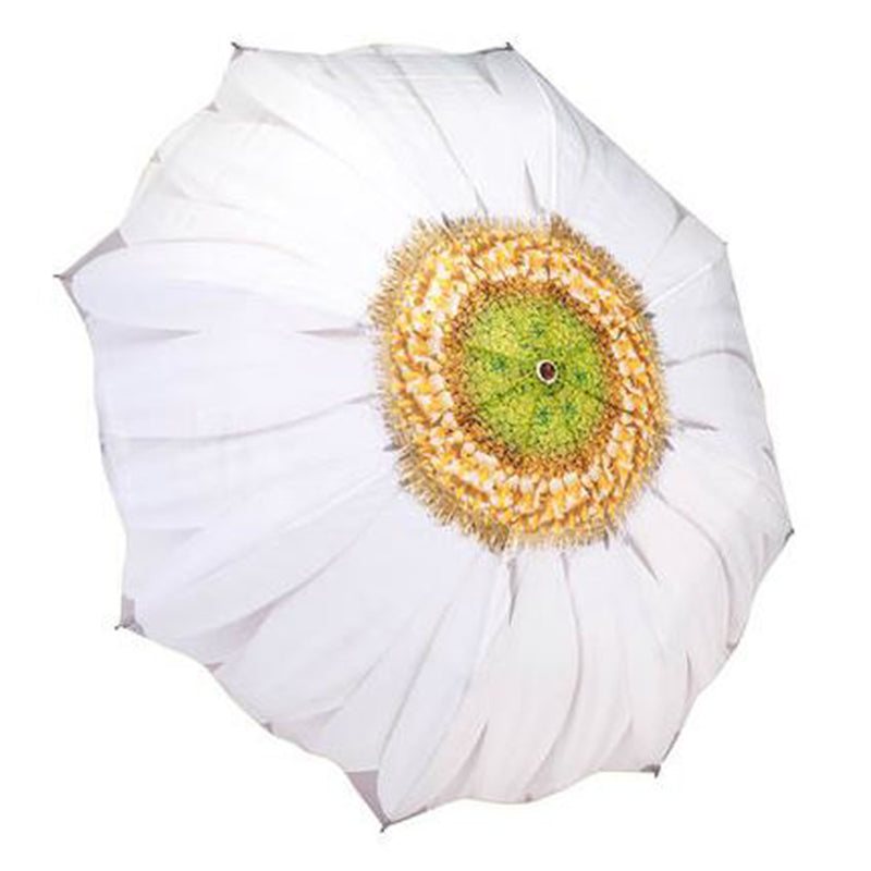 Galleria Floral Automatic Folding Umbrella - White Daisy