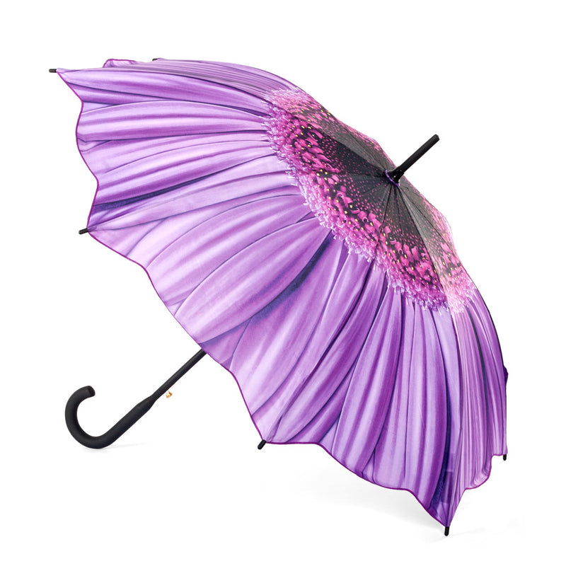 Galleria Floral Automatic Walking Umbrella - Purple Daisy