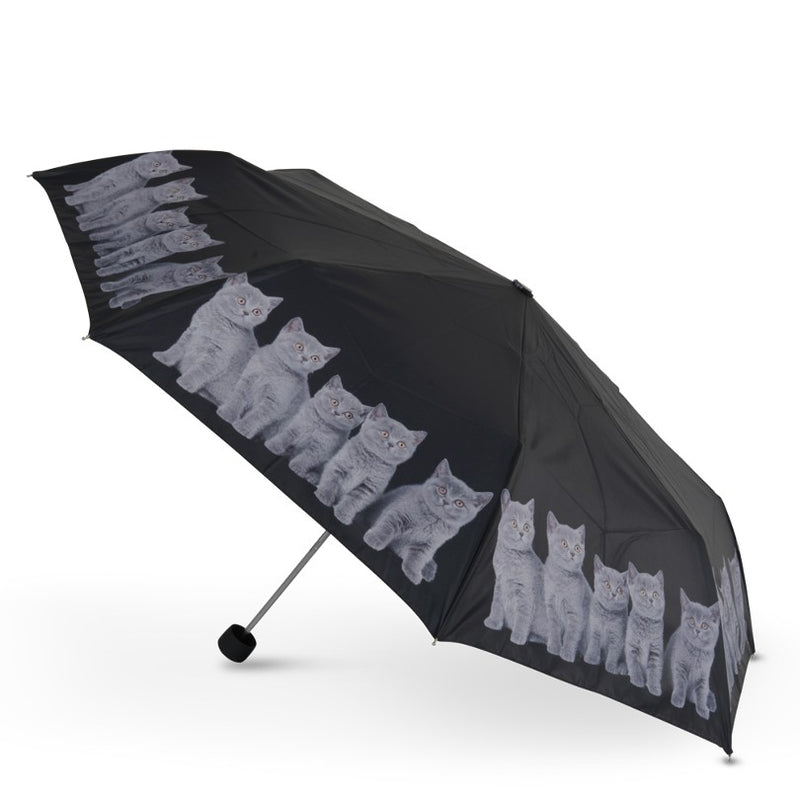 Cascada Collection - Grey Kittens Folding Umbrella