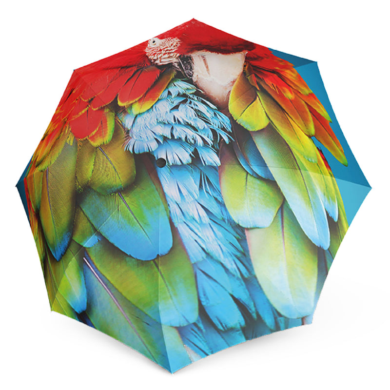 "Doppler Modern Art Collection ""ARA"" Parrot Print Automatic Walking Umbrella"