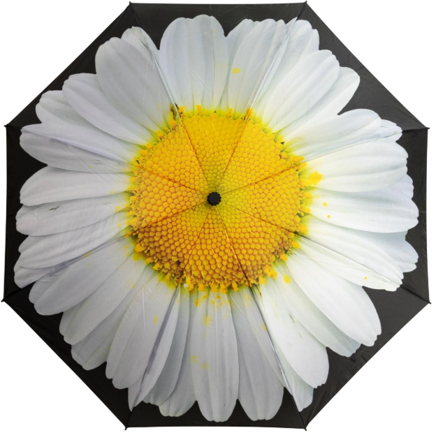 White Daisy Print Reverse 'Inside Out'  Folding Auto Umbrella