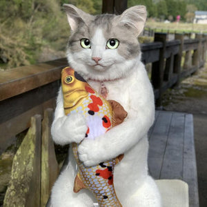 A cat backpack with posable arms and legs! - hygiene sanctuary