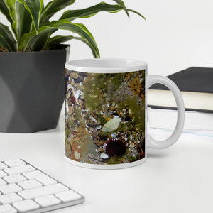 Orkney Islands Mug - Rock Pool on Graemsay, shop.Orkneyology.com
