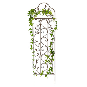 Iron Arched Garden Trellis - Bronze