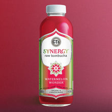 Load image into Gallery viewer, GT's Kombucha, Watermelon Wonder