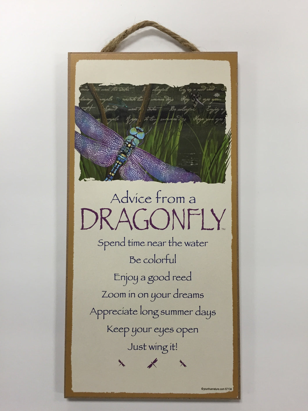 Advice from a Dragonfly Sign