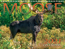 Load image into Gallery viewer, Moose 2021 Calendar by Maine Scene