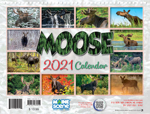 Moose 2021 Calendar by Maine Scene