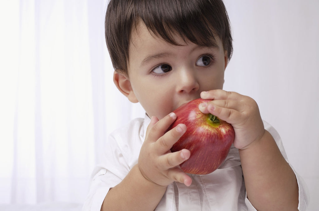 Conscious Parenting: Your One Year Old's Nutritious Food Guide