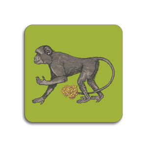 Avenida Home - Puddin' Head - Monkey Coaster