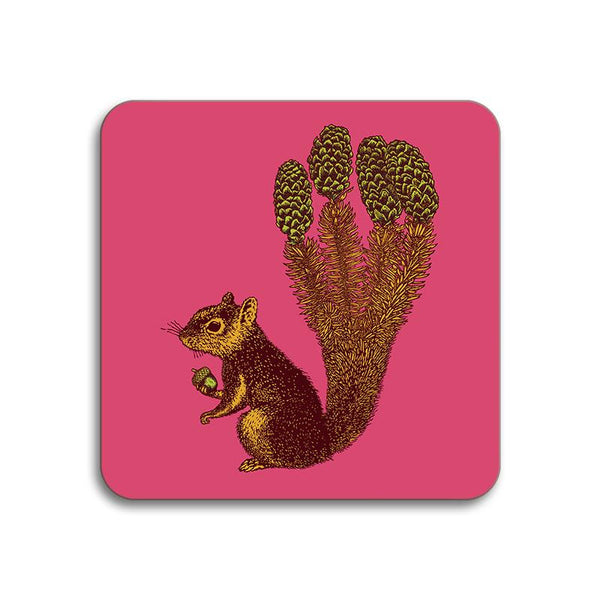 Squirel Animaux Coaster