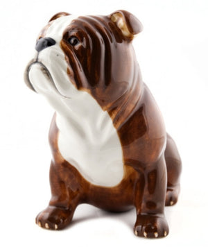 Quail - Bulldog Money Box