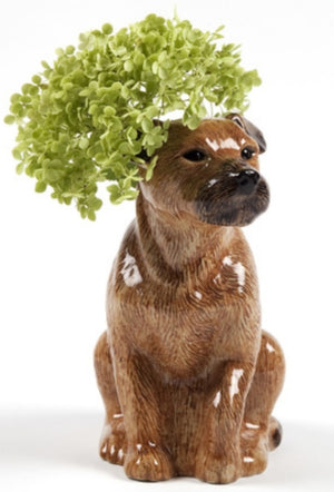 Quail - Border Terrier - Flower Vase