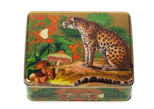 Madame Treacle - Whimsical Deep Rectangular Tin