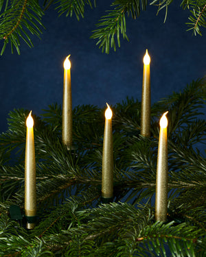 Sirius - Carolin 10 lights - Gold
