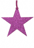 5 Small Purple Star Gift Tags